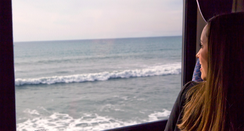 Pacific Surfliner Passenger Enjoying Ocean Views